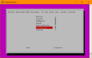 Pi-hole Setup: Auswahl des Upstream-DNS-Servers