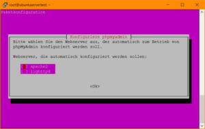 phpMyAdmin Setup: Auswahl des Webservers