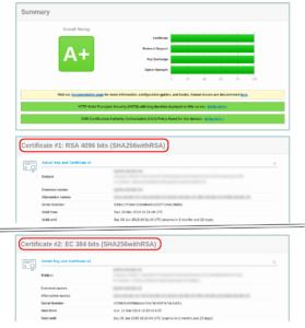 Beim SSL-Test werden zwei Zertifikate angezeigt (RSA und ECDSA)